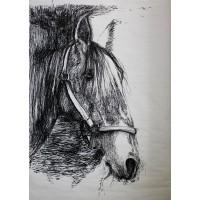 Kôň. Maľba na papieri